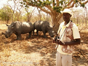 Ousman Bird Guide in Senegal